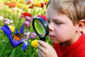 Биология для детей